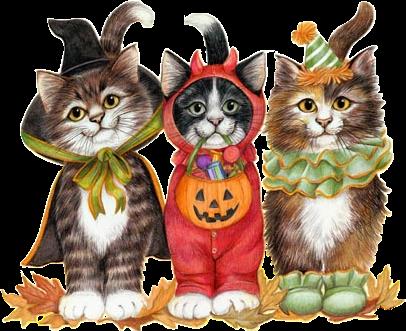 Résultat d'images pour gifs halloween