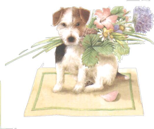 Fox terrier avec des fleurs sur un tapis