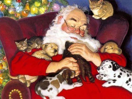 Pere Noel Avec Animaux Pére-noël Qui Dort Avec Des