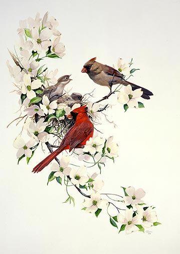 Grand oiseau avec des branches d arbres au fond pictures - Deco avec des branches d arbres ...